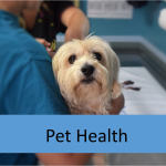What if your pet has a pre existing condition?