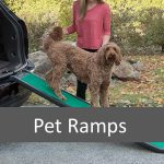 How a Pet Ramp May Help Pets into the Car or Furniture