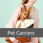 Which Pet Carrier is Best for your Senior Pet