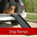 Best Ramps for Elderly Pets
