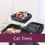 Best Cat Tree Condos for Elderly Pets