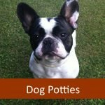 Best Dog Potties for Senior Pets