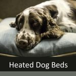 Best Heated Beds for Senior Dogs