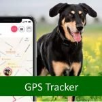 Review: Tractive GPS Tracker for Cats and Dogs