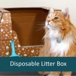 Review: Kitty Poo Club Disposable Cat Litter Box