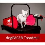 Review: dogPACER Treadmills for Dogs