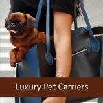 Best High End Luxury Pet Carrier Handbags & Accessories