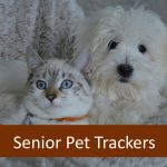 Best Pet Trackers Locators for Senior Pets