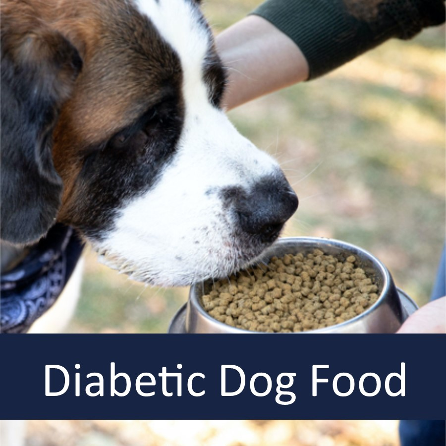 What Type of Dog Food Is Appropriate for Diabetic Dog