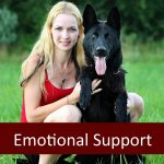 Does Your Senior Pet Qualify as an Emotional Support Animal?