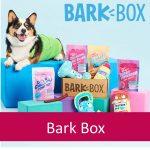 Bark Box - Dog Subscription Box