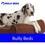 Bully Beds - Dog Beds, Grooming, Travel, Blankets