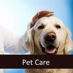 Paying for Senior Pet Care