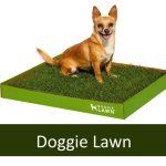 DoggieLawn - Dog Potty, Pee Pad
