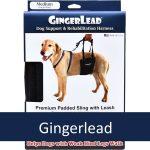 Gingerlead - Dog Slings, Harnesses