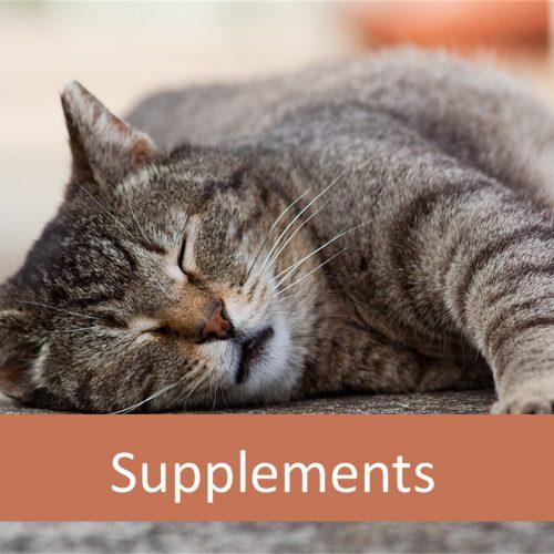 cat supplements