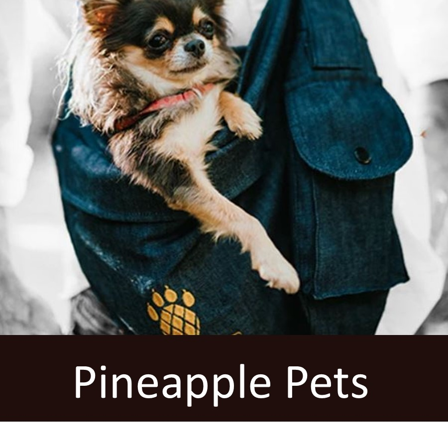 pineapple pets carrier